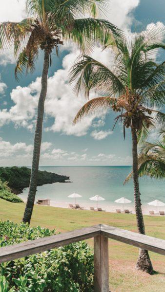 beach area in the Bahamas